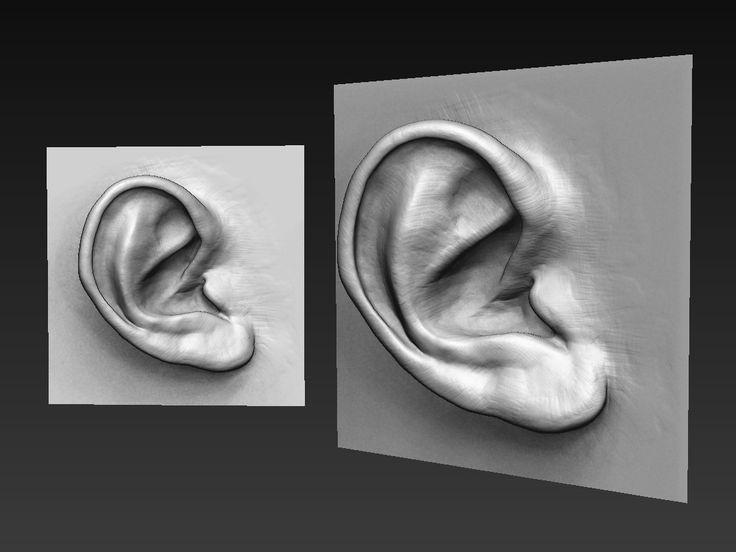 Ear Study, Billy Lord on ArtStation at https://www.artstation.com/artwork/Y6NPP