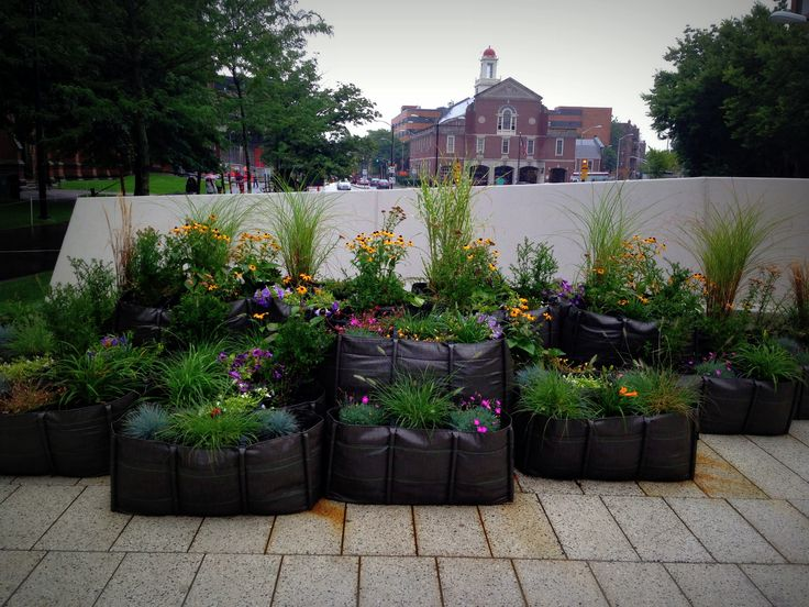 Our BACSAC planters part of the renovation of the Plaza at Harvard University. Purchase our BACSAC planters at loopeedesign.com