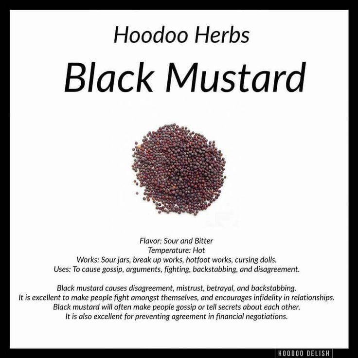 Black mustard Hoodoo - Pinned by The Mystic's Emporium on Etsy