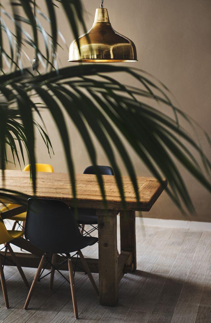 FERGUS Club Europa. Wood & Plants. Bar Design