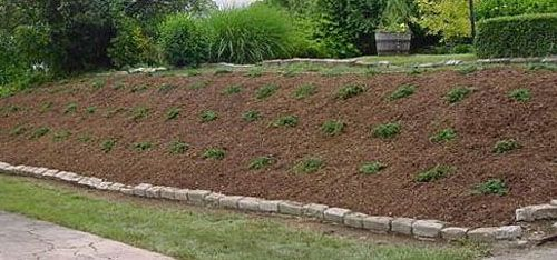 landscaping a slope junipers | Landscape Installations Plantings Hillside with Juniper Ground Cover ...