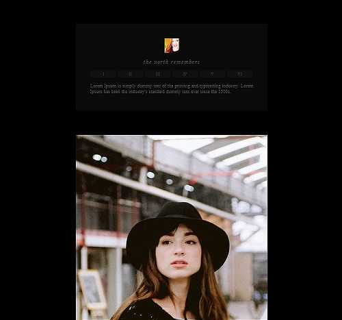 I kinda like the one that is pictured here....simple,minimal dark free single column tumblr theme by everlark
