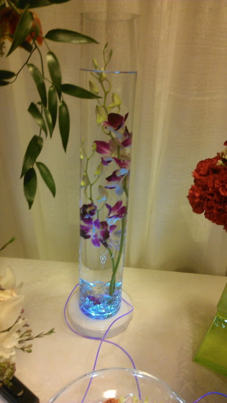 Stems Of Dendrobium Orchids Submerged Under Water In A Tall Cylinder The Cylinder Is Sitting