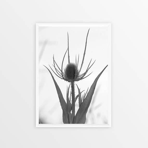 Scandinavian Print Plant Floral Print Flower Art Printable
