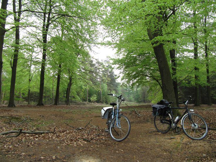 2013 De Veluwe - Nunspeet met de fiets