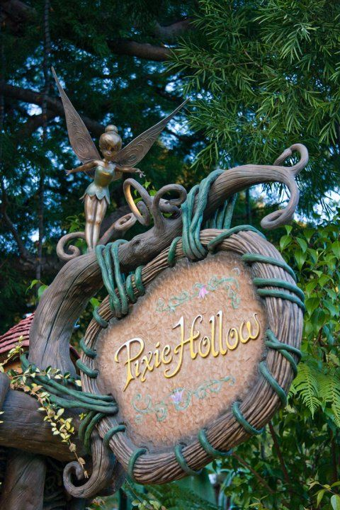 Pixie Hollow at Disneyland in anaheim, CA is using LS20G-SZ Landscape Laser Starfield Projectors to add fireflies to their trees in their magical faerieland. You can find it here http://lasersandlights.com/blisslight-ls20g-w-moving-green-laser-beams-p-44.html?cPath=18
