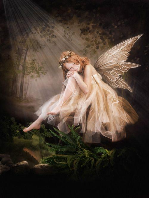 fairy portraits - Google Search