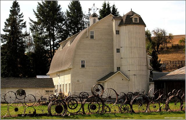 I LOVE the fence in front of this classic barn.  Uniontown, Washington