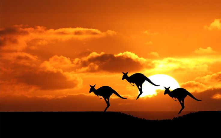 "Thoughts of travel to the ""Land Down Under"" evoke many images of the famous Australian Outback, kangaroos, wallabies and the Great Barrier Reef. There is n"