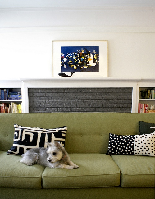 My Corona Sofa Green Macys And A Schnauzer Too Find This Pin More On Living Room Ideas