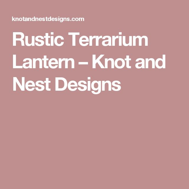 Rustic Terrarium Lantern – Knot and Nest Designs