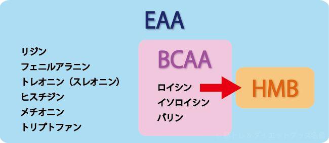 違い eaa bcaa
