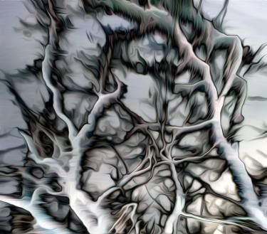 "Saatchi Art Artist alex dukay; Photography, ""Dark Tree"" #art"