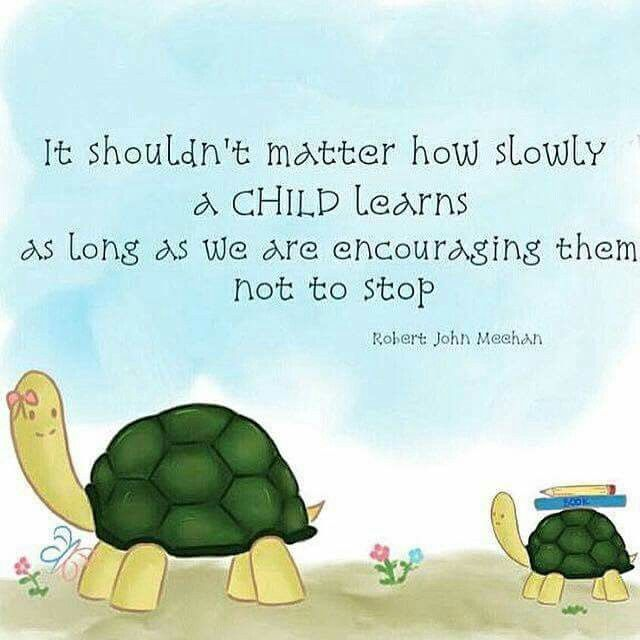 It shouldn't matter how slowly a child learns as long as we are encouraging them not to stop. ~ Robert John Meehan