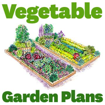 Plans for vegetable gardens gardens beautiful and for Beautiful vegetable garden designs