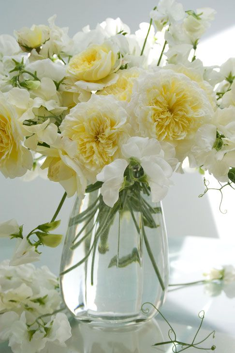 royal white sweet peas + pilgrim roses
