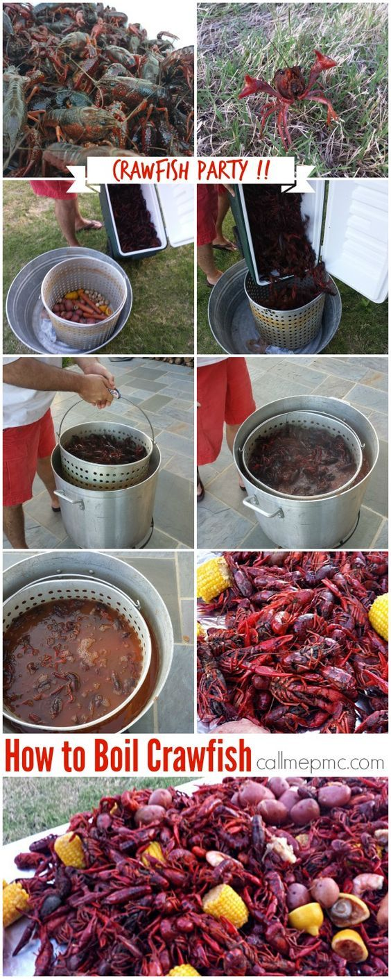 160 best boil clambake u0026 seafood recipes images on pinterest