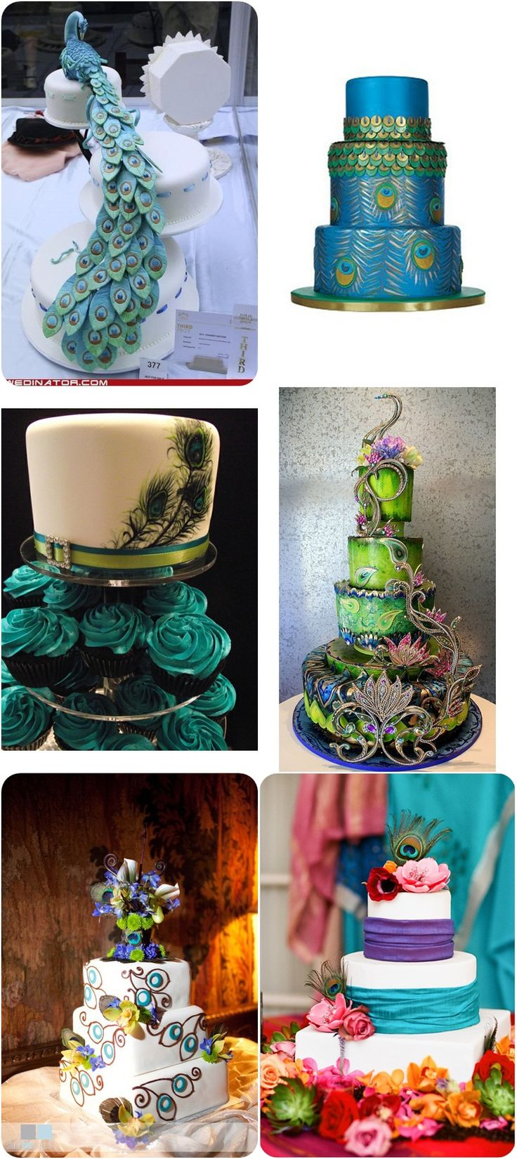 wild peacock cakes #weddingcakes #weddinginpiration #peacockwedding
