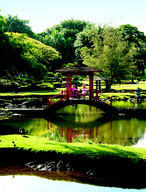 17 Best Images About Hilo Hawaii On Pinterest