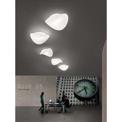 Balance Ceiling Light