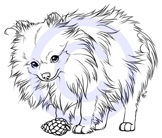 Mini the Pomeranian -tattoo design- by henu on DeviantArt