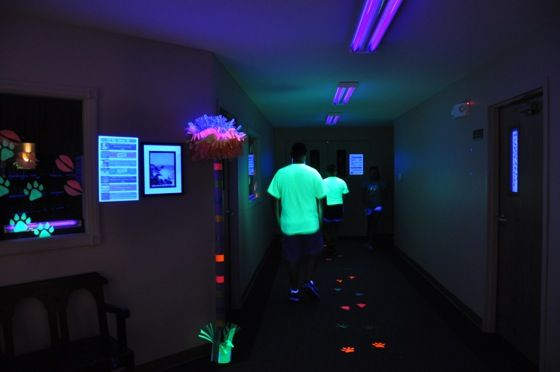 230 Best Neon Blacklight Glow In Dark Party Ideas Images