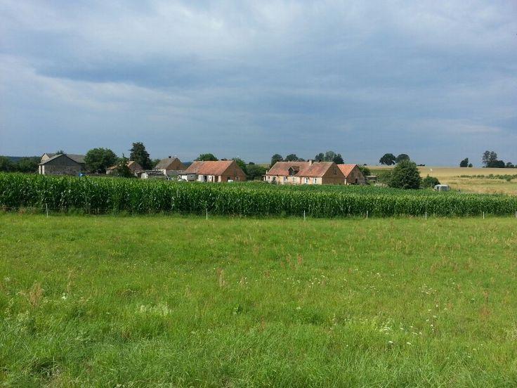 Bucolic Polish countryside.