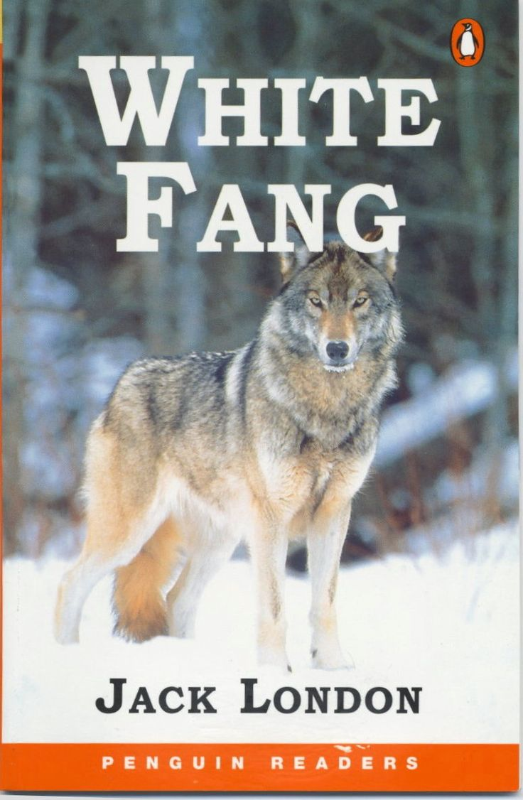 Picture No. 11  White Fang