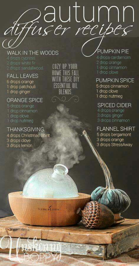 Autumn Diffuser Recipes - Definitely a must try this year!