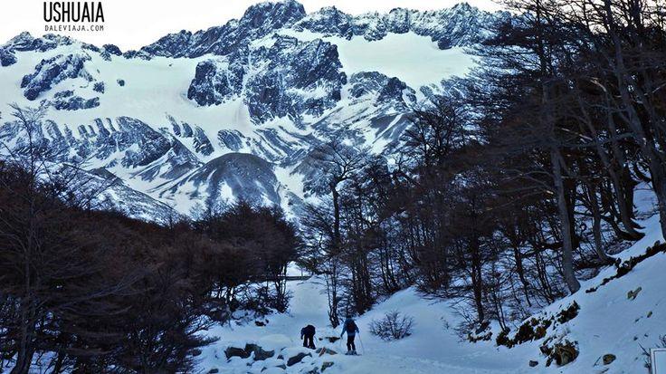 GLACIAR  A PASOS DE LA CIUDAD:  El glaciar Martial es parte de la cordillera que lleva el mismo nombre y constituye la mayor fuente de agua potable de la ciudad y punto panorámico ideal para verla desde arriba. Se puede llegar caminando. Debajo del Glaciar hay una pista de esquí.