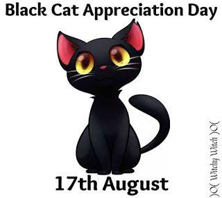 Kissakahvila Purnauskis: 9 syytä miksi mustat kissat ovat mahtavia!