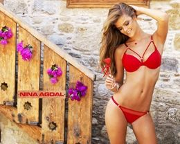 Superhot exotic Model nina agdal in red hot bikini images free download at hdwallpapersz.net