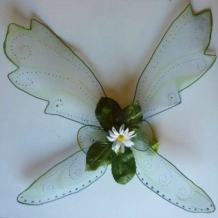 ailes fée/ déguisement fée clochette... Suite...