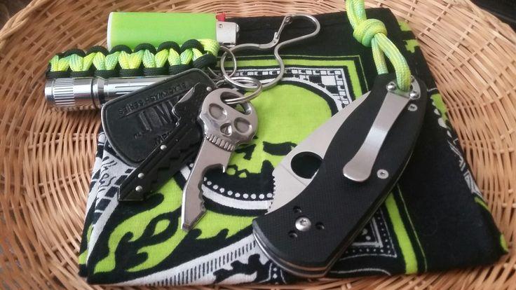 Spyderco Persistence, OLIGHT AAA, SKELEKEY, SOG KEY KNIFE & A BIC.