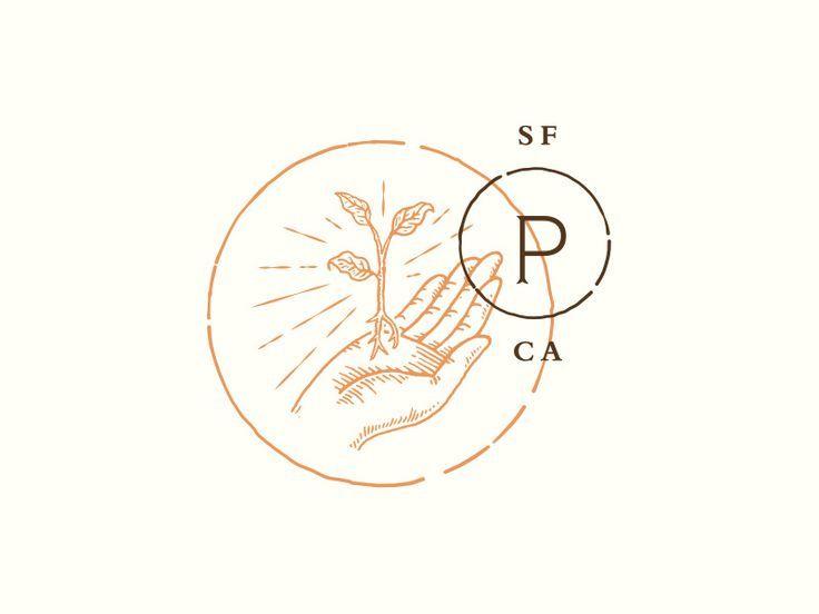 beautiful hand drawn branding