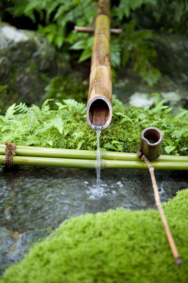 87 best japanese garden images on pinterest japanese for Japanese bamboo water feature