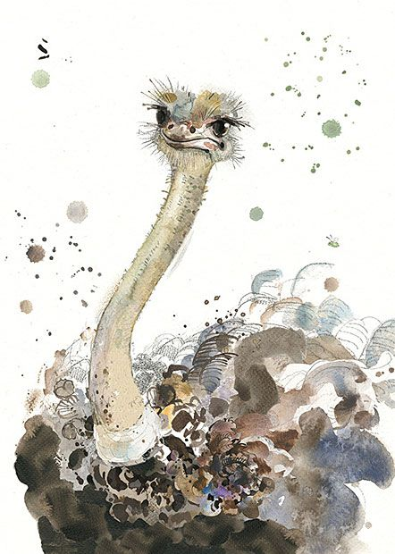 Ostrich by Jane Crowther for Bug Art greeting cards.
