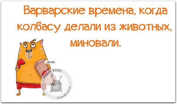 Прикольные фразочки в картинках :) 27 штук » RadioNetPlus.ru развлекательный…