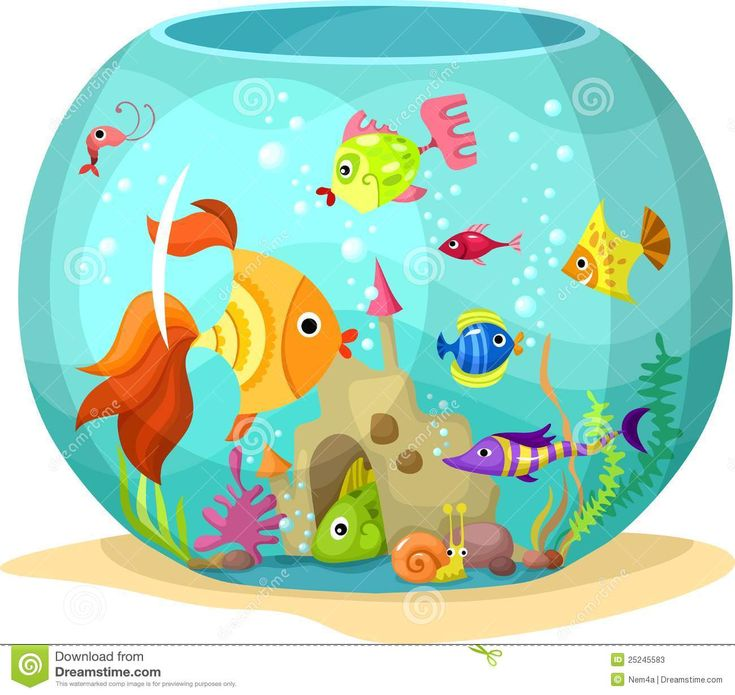 8 best pop up book images on pinterest fish aquariums for Pop up aquarium