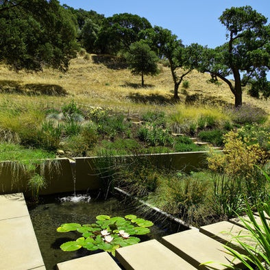 contemporary pondHuettl Landscapes, Modern Landscapes, Landscapes Ideas, Water Features, Design Ideas, Gardens, Landscapes Architecture, Landscapes Design, Outdoor Design