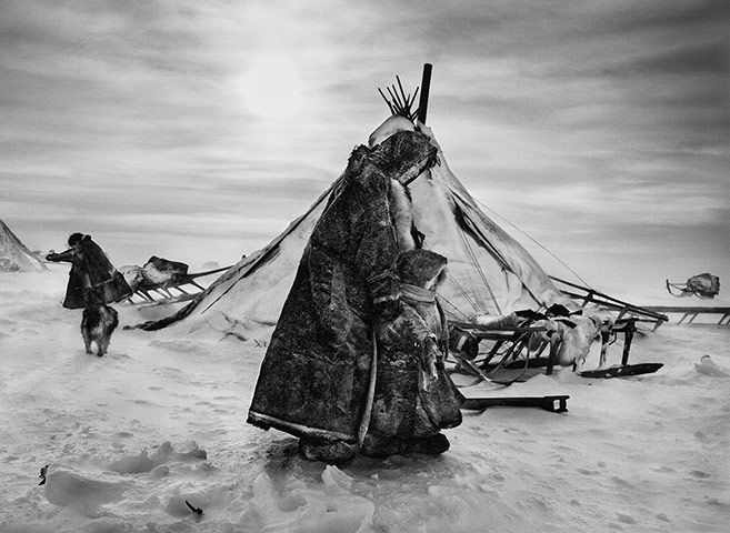 North of the Ob river, about 100km (62 miles) inside the Yamal peninsula, fierce winds keep even daytime temperatures low. When the weather is particularly hostile, the Nenets and their reindeer may spend several days in the same place, doing repair work on sledges and reindeer skins to keep busy. The deeper they move into the Arctic Circle, the less vegetation is to be found.
