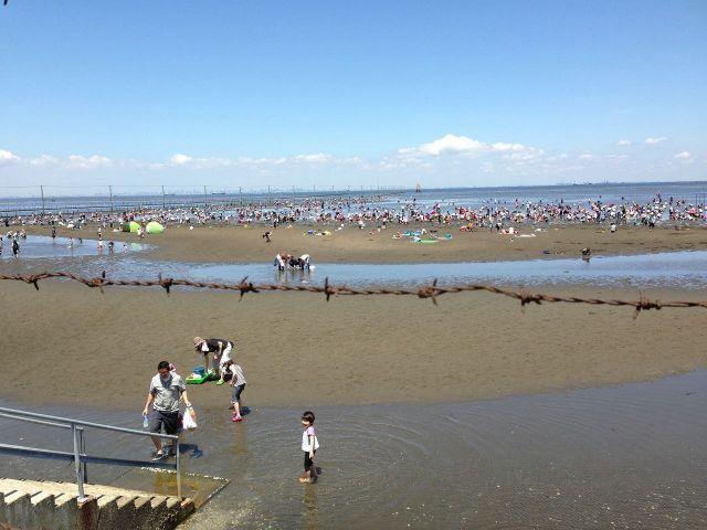 千葉県牛込海岸 潮干狩り おすすめスポット