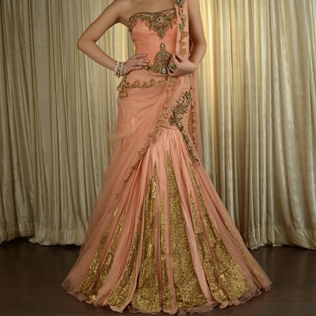 Beautiful Indian Reception Outfit
