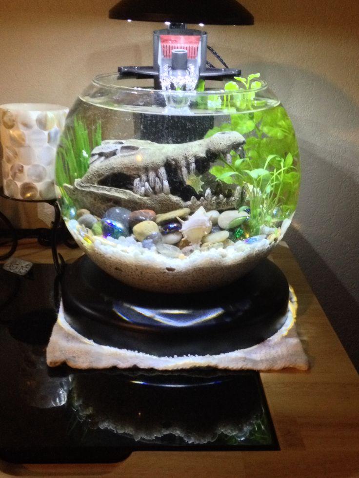 Water Garden Fish Tank