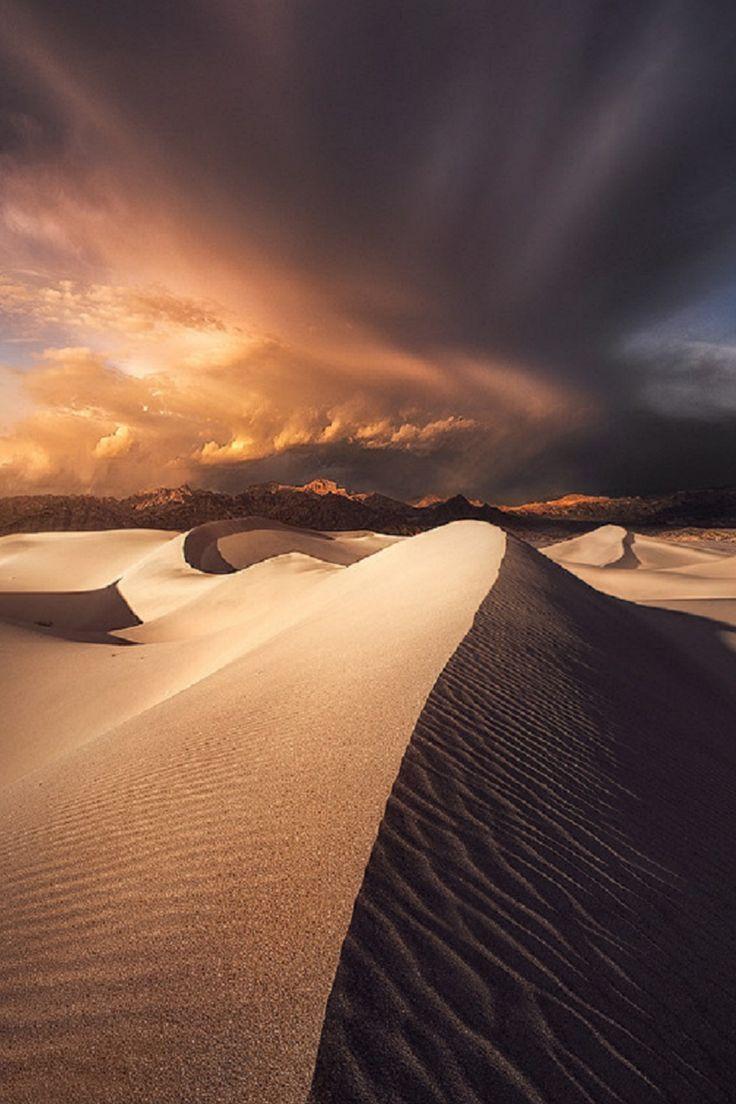 bohemian-desert:  Mesquite Sand Dunes, California Ted Gore