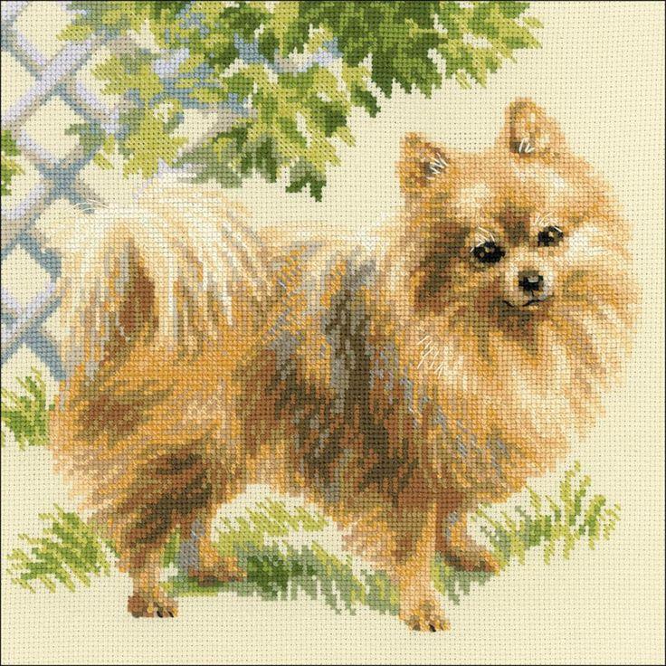"Pomeranian Counted Cross Stitch Kit-9.75""X9.75"" 14 Count"