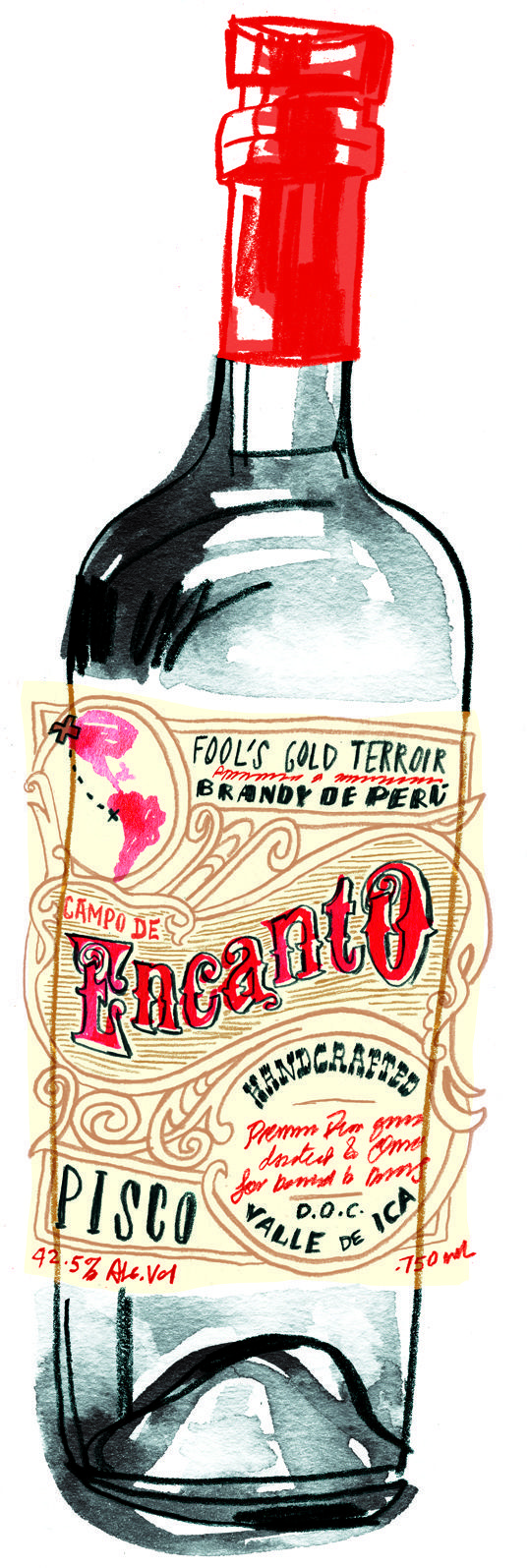 Pisco Bottle Design   #design #pisco