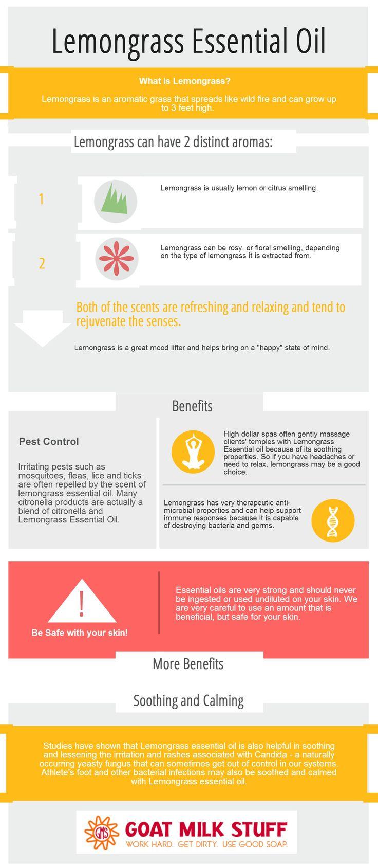 lemongrass essential oil infographic