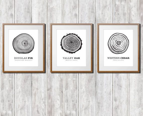 Hey, I found this really awesome Etsy listing at https://www.etsy.com/listing/213546915/rustic-cabin-decor-cabin-art-prints-set