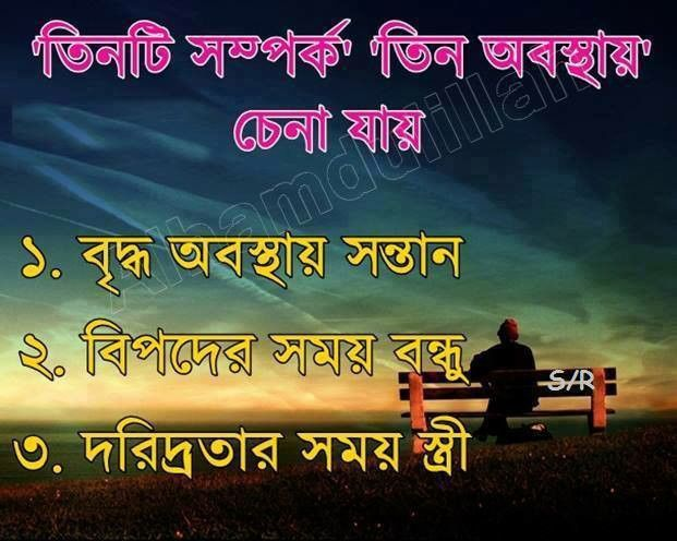 53 best bangla status images on pinterest a quotes
